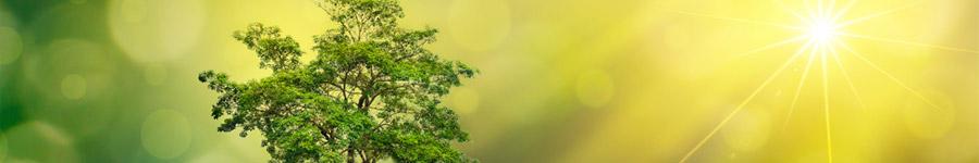 Umwelt- & klimafreundliche Werbeartikel