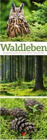 Kalender Waldleben 2021 als Werbeartikel